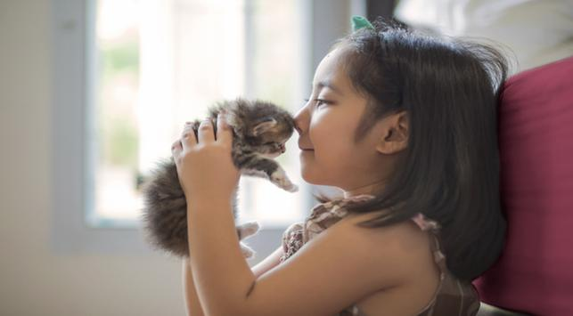 Bulu Kucing Penyebab Penyakit Asma?